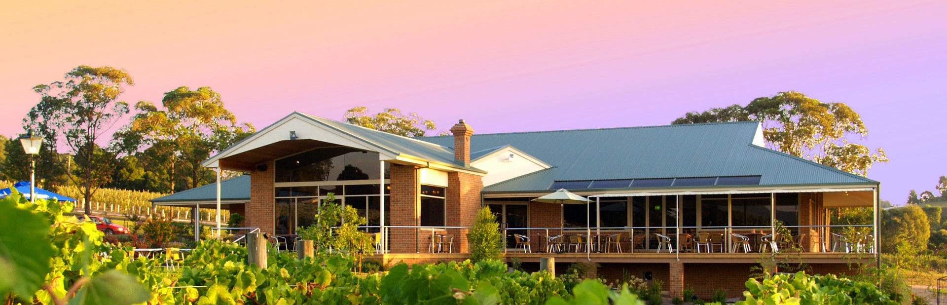 Wild Cattle Creek Estate, Yarra Valley, Melbourne. Accommodation, Restaurant, Vinyard, Weddings, Functions